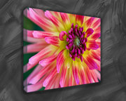Natures Most Beautiful Thing Flowers as Floral Canvas Prints at £9.00